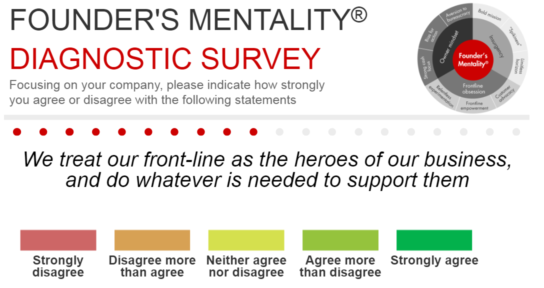 consultantsmind-founders-mentality-diagnostic