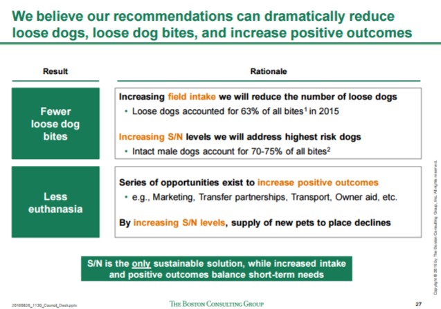 BCG presentation: Solving Dallas' stray dog problem